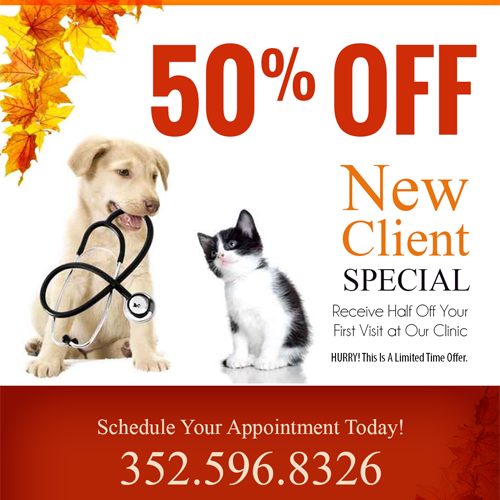 New Client 50% OFF